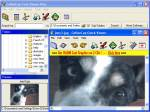 CoffeeCup Free Viewer Plus, Freeware, Windows