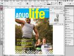 Adobe InDesign CS3 ACE Exam Aid