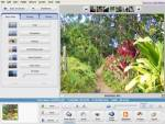 Picasa, Freeware, Windows